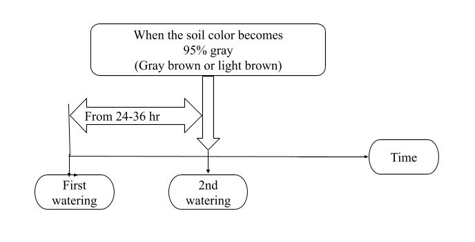 The image showing diagram of Watering Frequency Without Drying