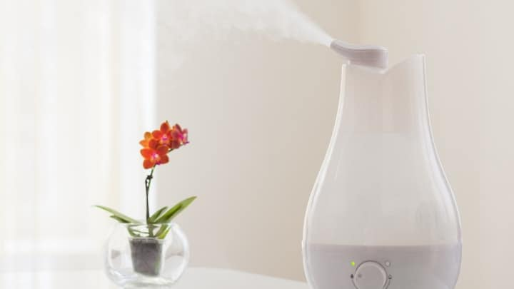 Electric Humidifier for Plants